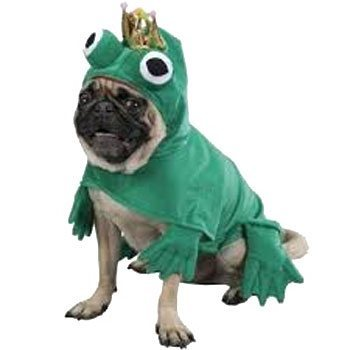 green prince frog dog costume