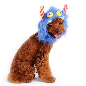 Blue Furry Monster Dog Hat