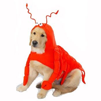 red lobster puppy costume