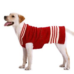 red pullover v-neck boy dog sweater