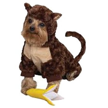 brown plush body, tail, and head monkey halloween dog costume