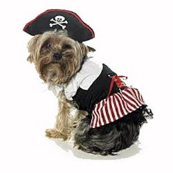 girl pirate dress with hat dog costume