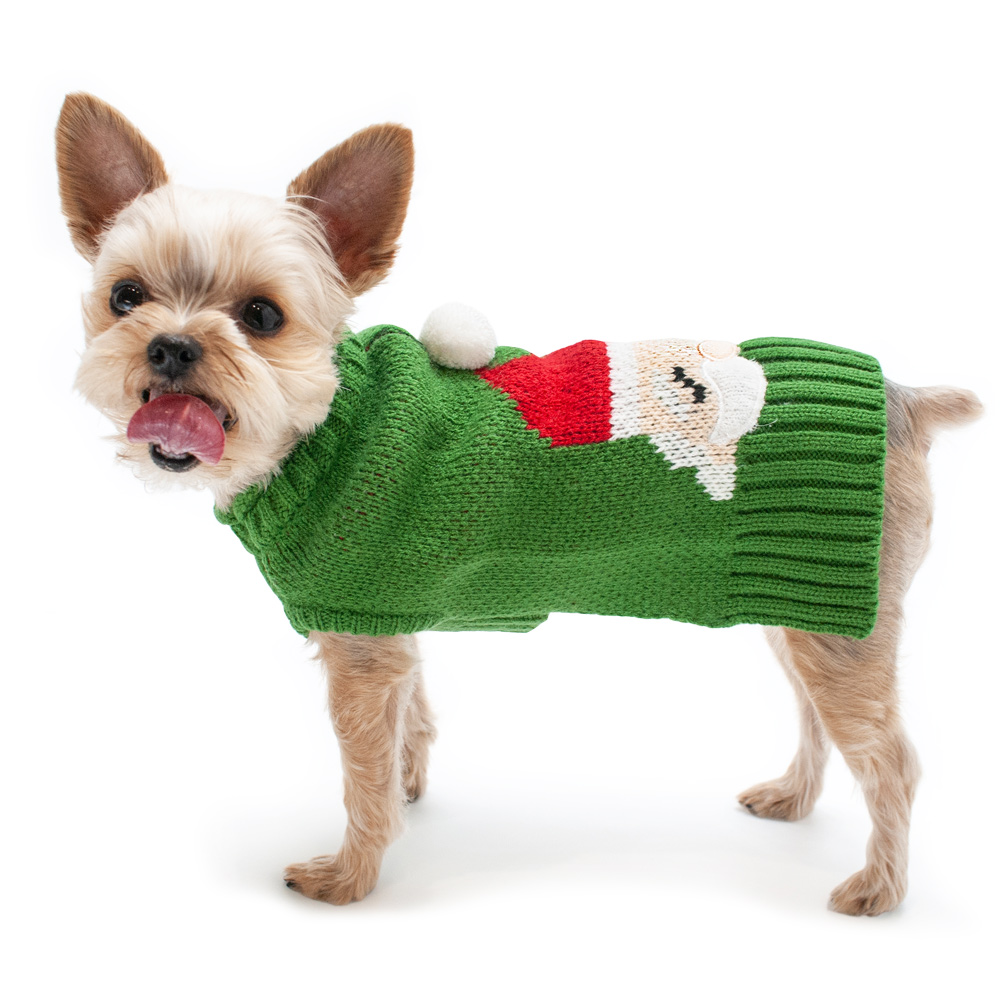 Christmas dog clothes and toys