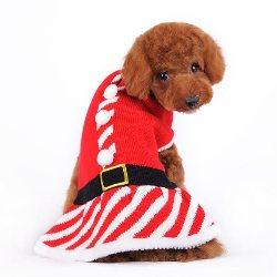 santa girl holiday sweater dress