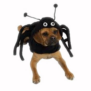 realistic black with attached legs spider dog costume