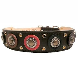 ATC leather Toby Dog Collar
