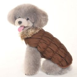 Ruched brown dog Bubble Jacket