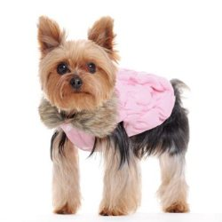 pINK dOG ruched bUBBLE jACKET