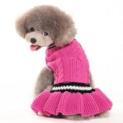pink preppy school girl  dog dress