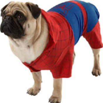 Red/Blue character inspired jumpsuit with raised webbing and attached hood dog costume
