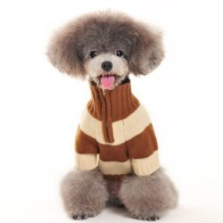 brown sporty striped zippered dog sweater