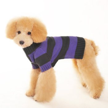 blue and black Sporty striped dog sweater