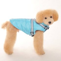 waterproof dog Harness Coat