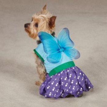 purple and blue winged  Fairy dress custom  for dogs