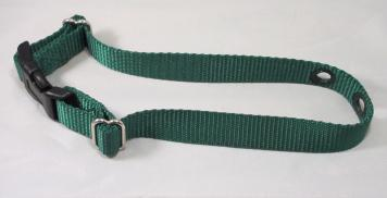 Green Nylon Replacement Dog Collar