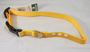 Replacement Dog Collar - Yellow
