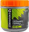 Gatorade Endurance Formula Powder