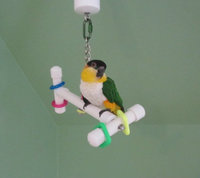 Parrot Party Small Bird-Bone Forever Bird Toy