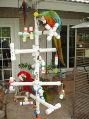 Kitchen Sink Parrot PlayGym with two macaws