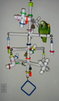 Kitchen Sink Hanging 8-Perch Playgym for medium sized birds