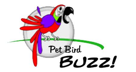 Pet Bird Buzz Logo