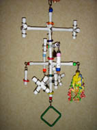 Kitchen Sink 8-perch Hanging Playgym for small birds