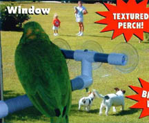 Pollys Pet Products Shower-Window Perch - window view