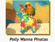 Polly Wanna Pinata shown with Conure