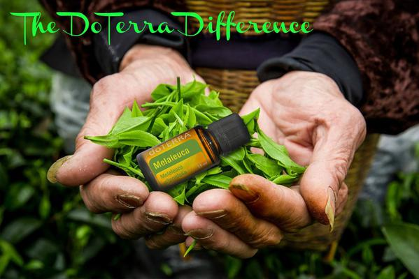 The Doterra Difference
