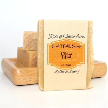 Citrus Mint Goat Milk Soap with Aloe