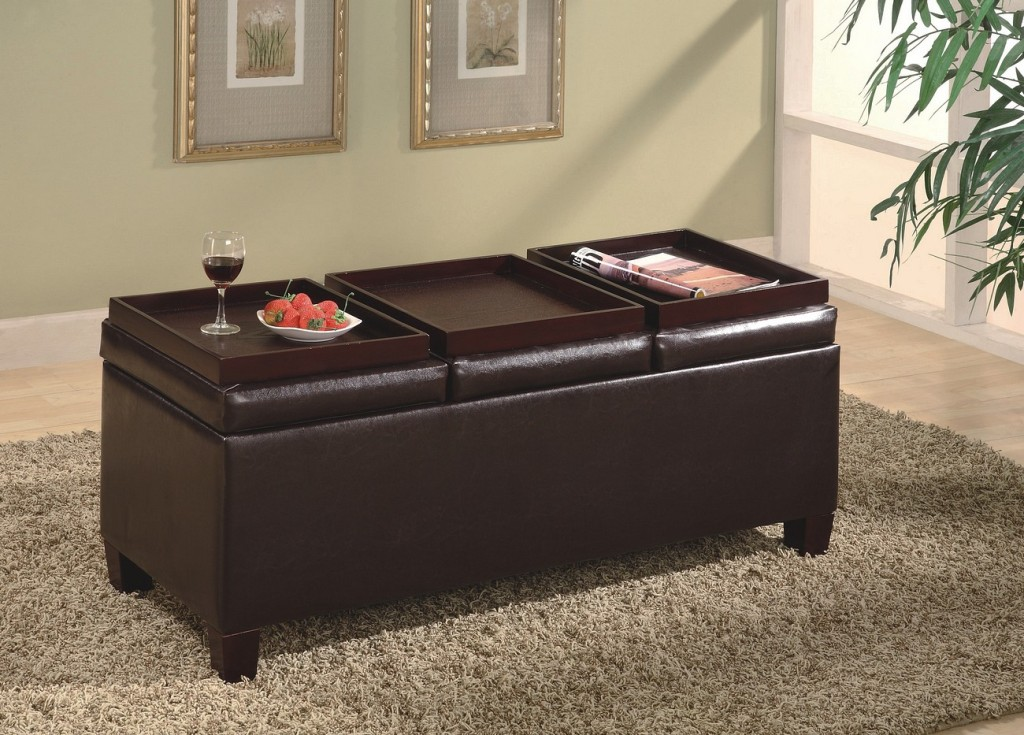 Storage Ottoman with Tray -Leather Ottoman with Tray - Contemporary Ottomans - Discount Living Room Furniture - Discount Online Furniture