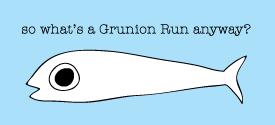 About The Grunion Run Groomsmen Shop