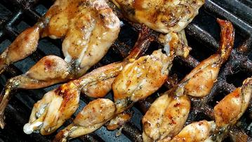 Grilled BBQ Barbeque frog legs photo