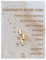Footprints in the Sand Brooch.
