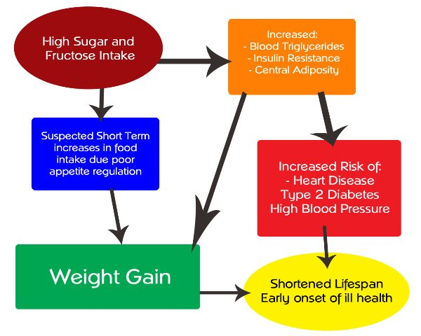 Risks of high Sugar intake