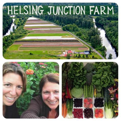 Helsing Junction Farm