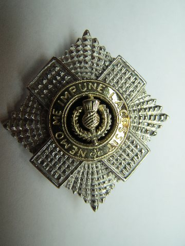 Royal Scots Staffordshire Brooch