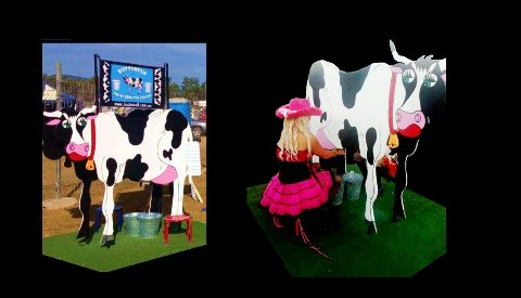 Buttercup the Milking Cow Contest