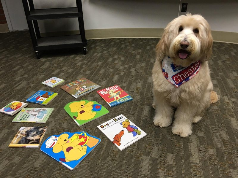 Chester getting ready to read with the kids at the library
