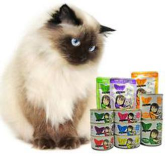 cat food-bay ridge-bensonhurst