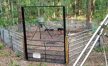 Wilderness Calls | Deer Feeders, Wild Hog Traps - Wild Hog