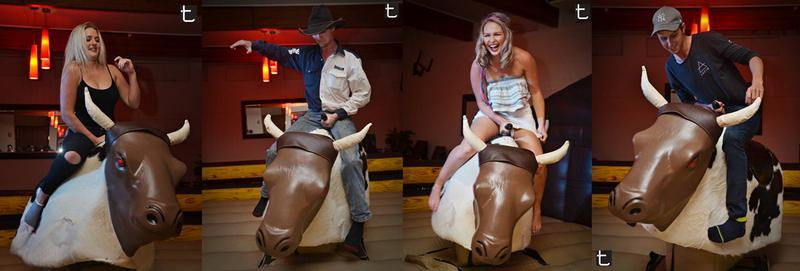 All About Our Mechanical Bucking Bulls