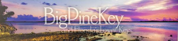 Lodging In The Lower Florida Keys