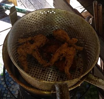 Fried frog leg fryer photo